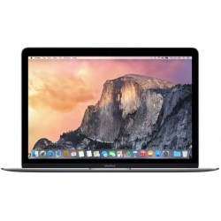 PORTATIL APPLE MACBOOK RETINA GRIS ESPACIAL DC-1.1--8G-2